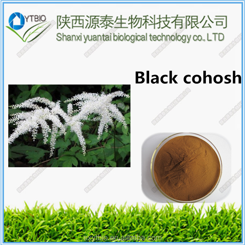 factory supply Best Price and Pure Black Cohosh P.E .BLC-Tritepene2.5%,8% HPLC