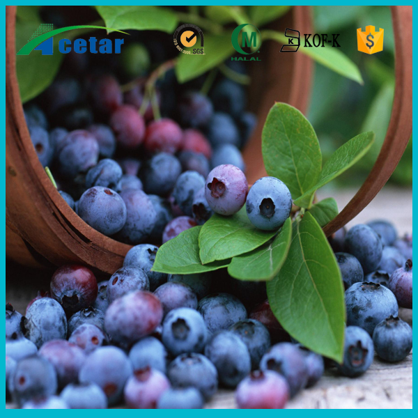 ISO22000 factory supply bilberry berry extract powder foods price list