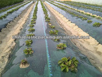 pe agricultural black mulch film with holes