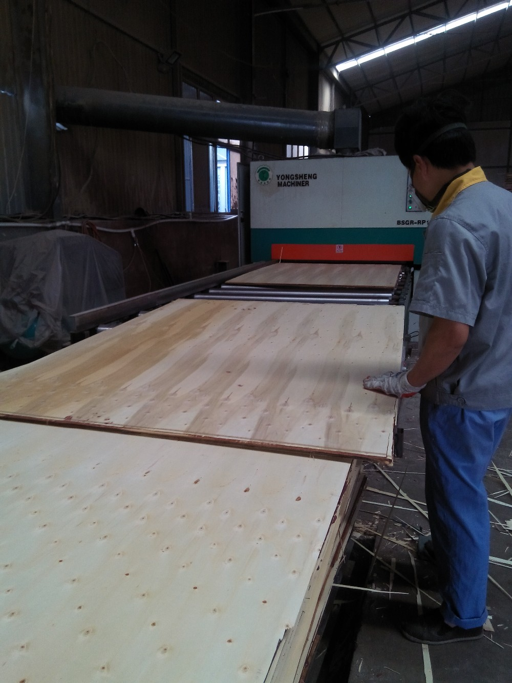 film faced plywood/marine plywood for construction