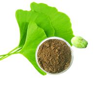dried herbs fitness supplements extract herbal chlorophyll powder ginkgo biloba extract powder