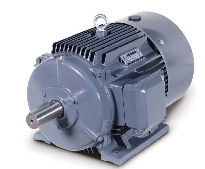 WEG Standard Three Phase Electric Motors