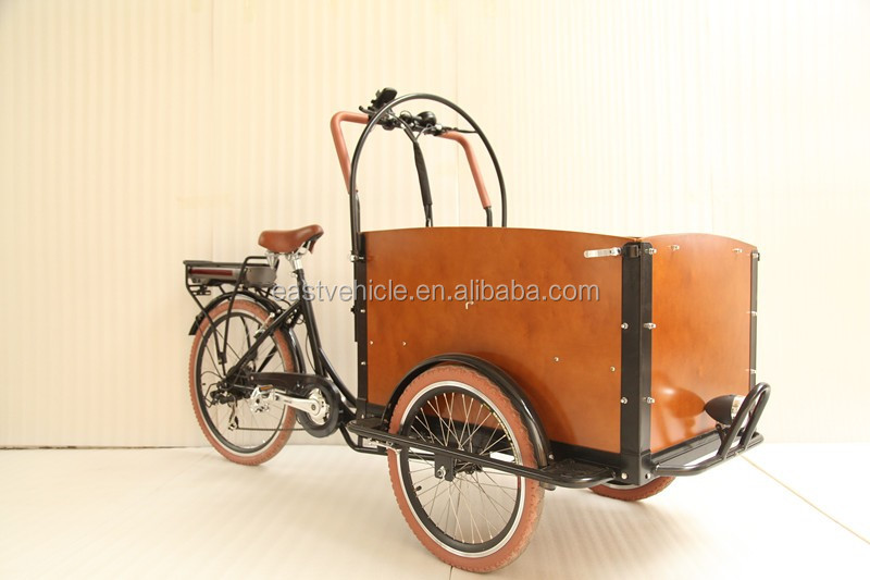3 wheel electric cargo bike with cabin for carrying kids and pets
