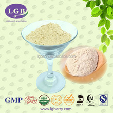 ISO9001, GMP, organic Plant-based Protein Meal Replacement Shake for Weight Management