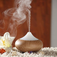 2014 the best electronic gifts for old people is aroma diffuser GX
