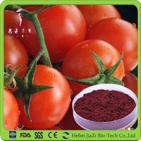 All natural Lycopene Tomato powdered extract