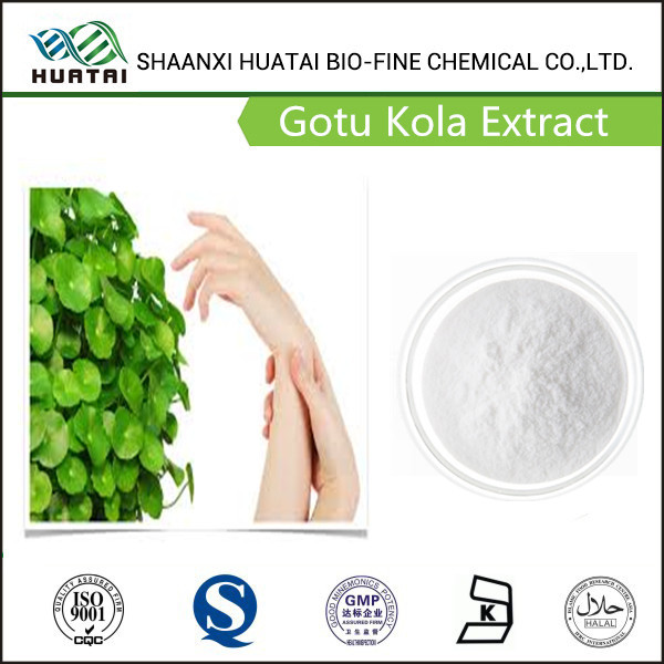 Water Soluble Gotu Kola Extract Total triterpenes 40%