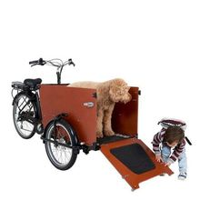 Hot Hot Hot Economic Jinxin Cargo Electric Tricycle Portable
