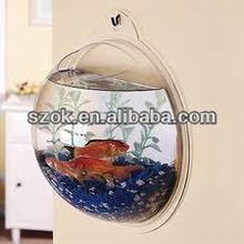 China acrylic clear wall oval indoor fish tank