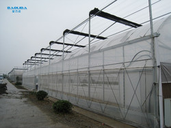 Galvanized Steel Pipe Used Green House With Plastic Film