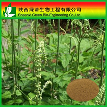 High Quality Black Cohosh 2.5% Hplc,Black Cohosh 2.5% Hplc/triterpenoides Saponis/High Quality Gotu Kola Extract