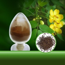 Manufacturer Natural Semen Cassiae/Cassia Seed 10: 1 Extract Powder