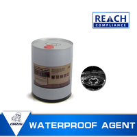 WP1358 Stable hydrophobic silicone waterproof spray for grantie artifical stone