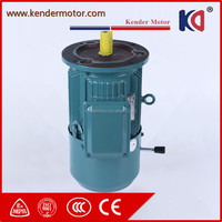 Yej Electromagnetic Three Phase DC Brake Induction Electric Motor (B3 B5 B35)