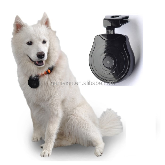 High Quality Low Price Mini Digital Pet Collar Camera for Your Lovely Pets