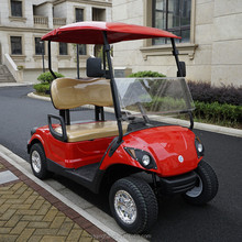 2018 hot sale 2 seater mini electric or gas powered golf cart with competitve prices for sale