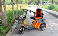 adults Electric Tricycle 120kg load
