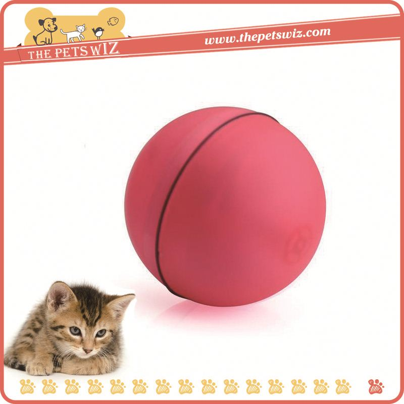 Shopping p0wCJ pet products for sale