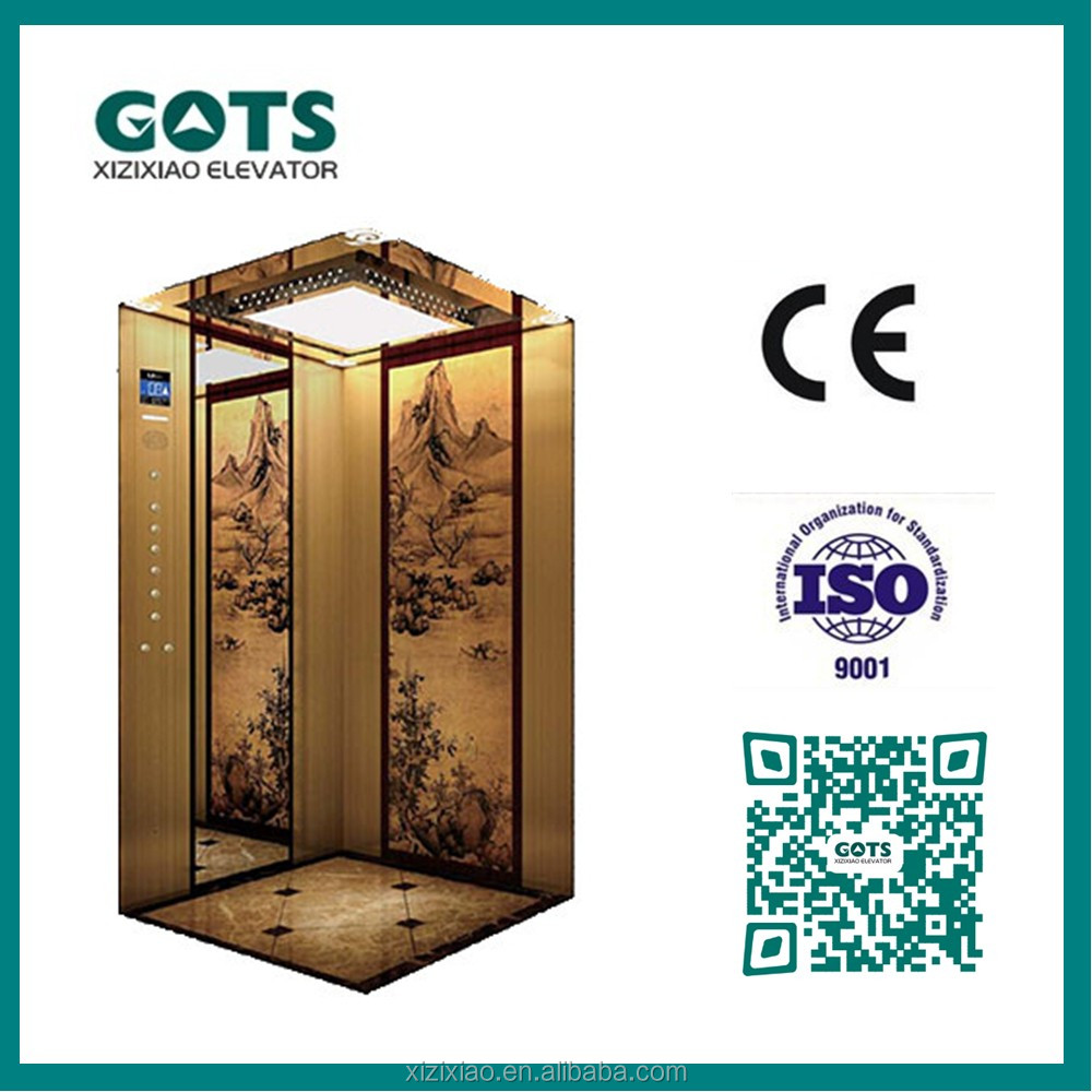 cheap home elevator passenger lift with beauty cabin design