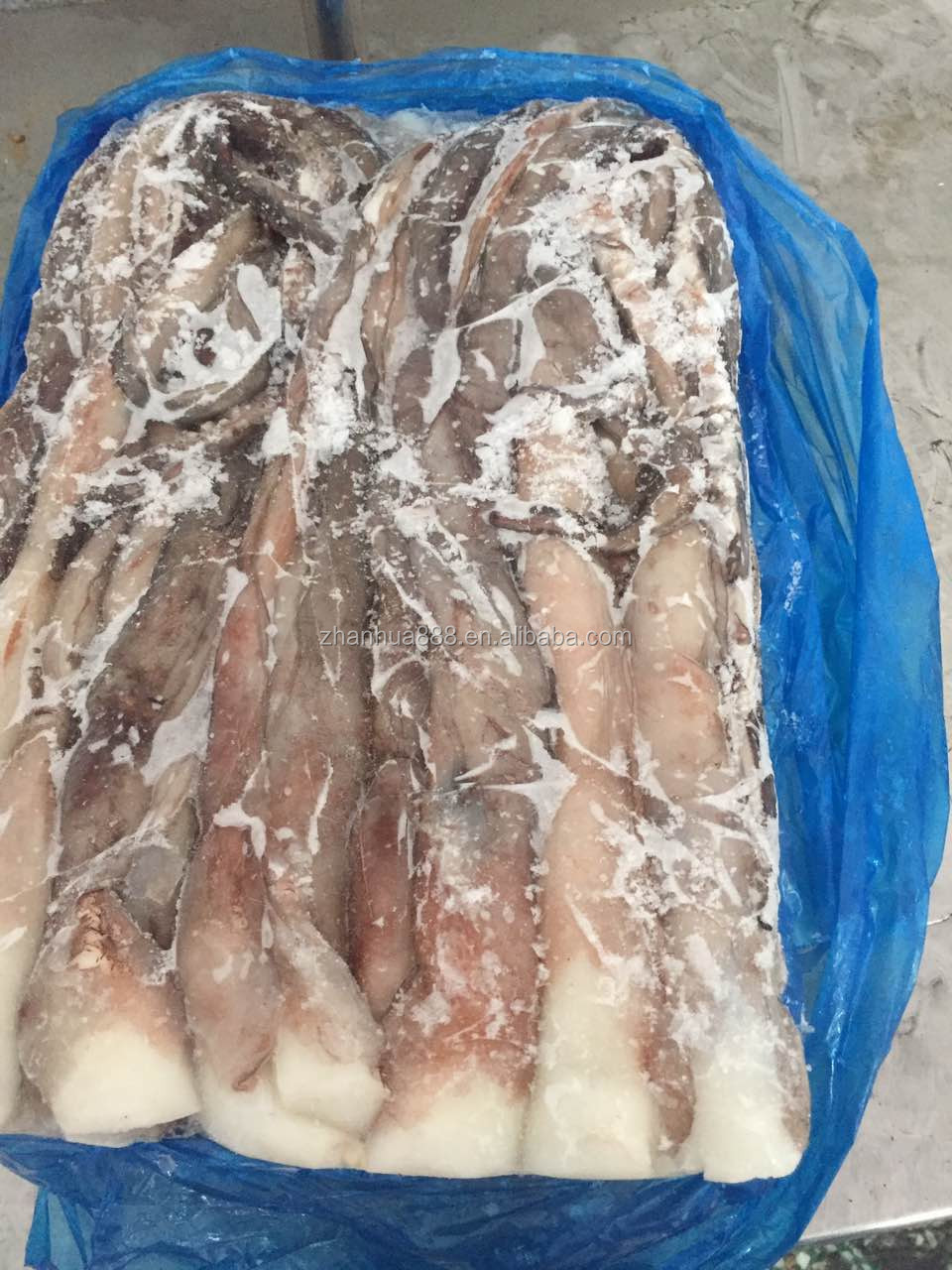 Frozen Giant Squid Long Tentacles (Dosidicus Gigas) with EU certification