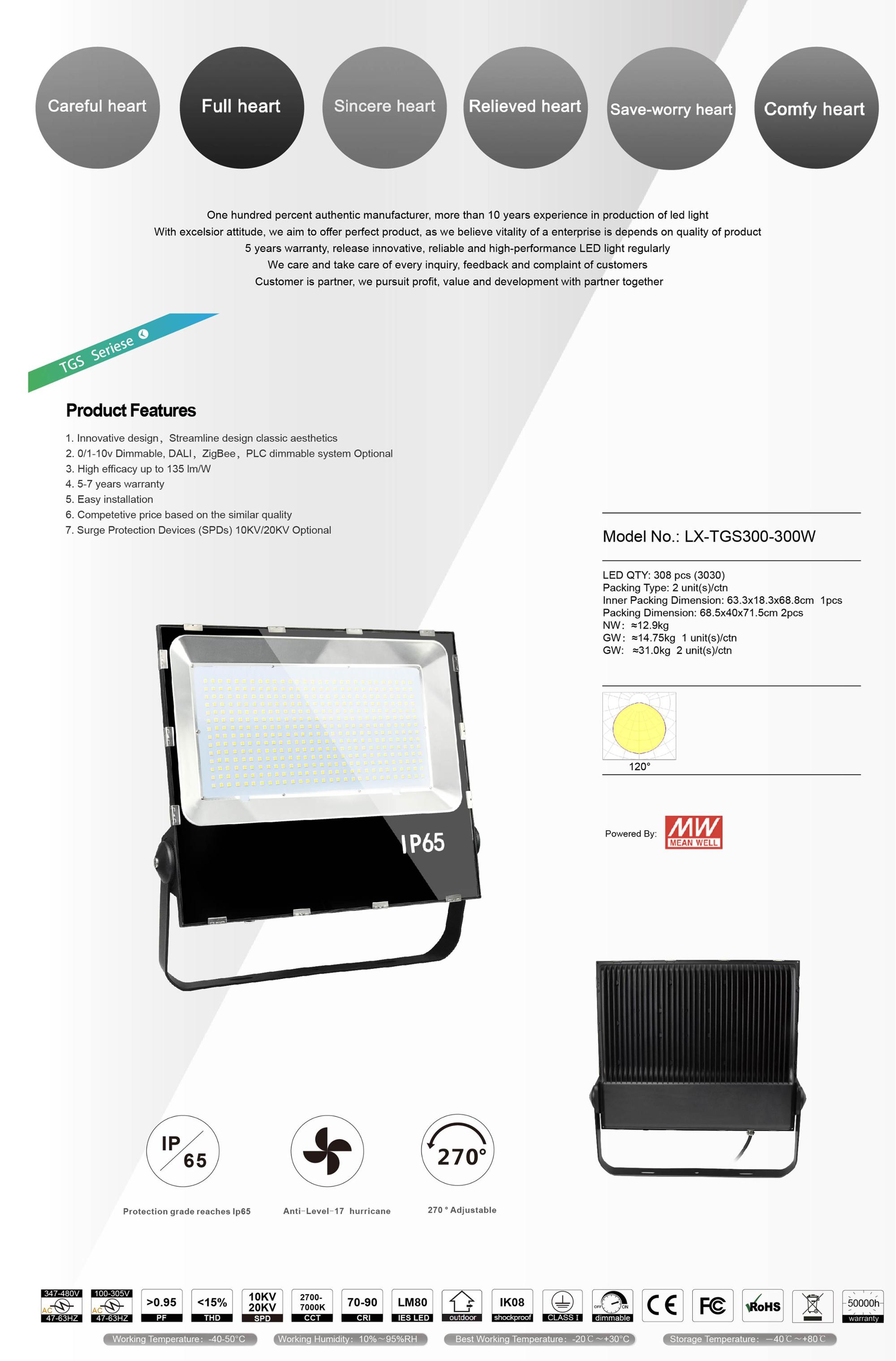 100000h LED Flood Light 300W with IP65 Aluminum