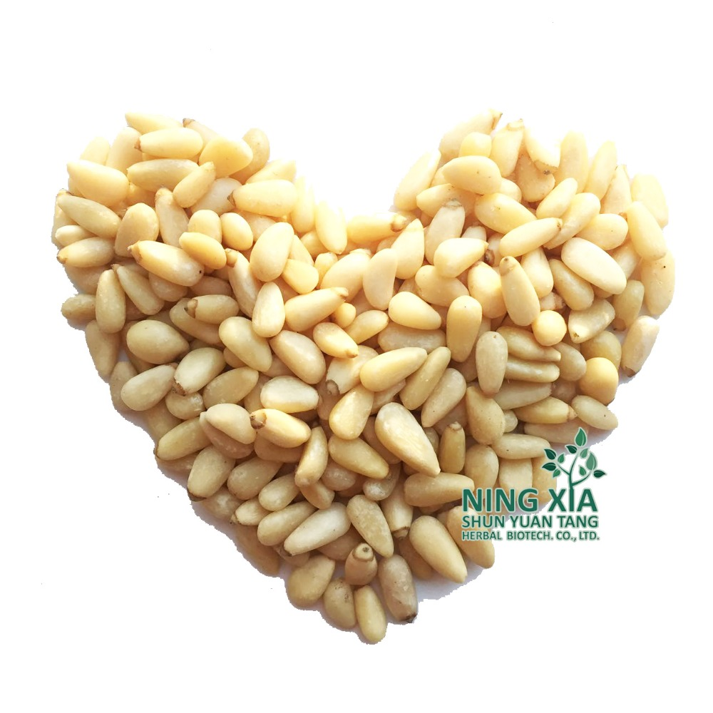cedar nut & pure red pine nut wholesale