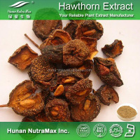 Natural Herbal Supplement Hawthorn Berry Extract Hawthorn Fruit Leaf Extract