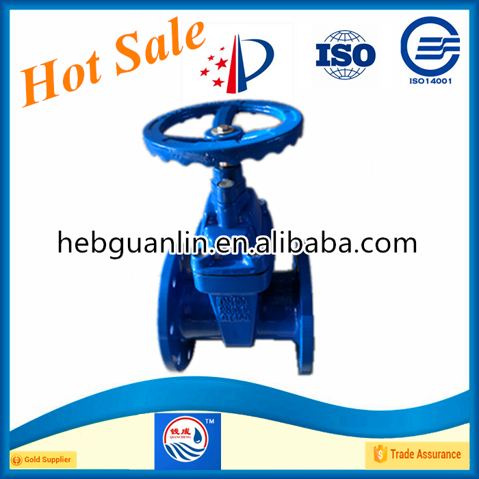 High Quality F4 Dn50-dn300 Din Standard Non-rising Stem Rubber Seated Gate Valve