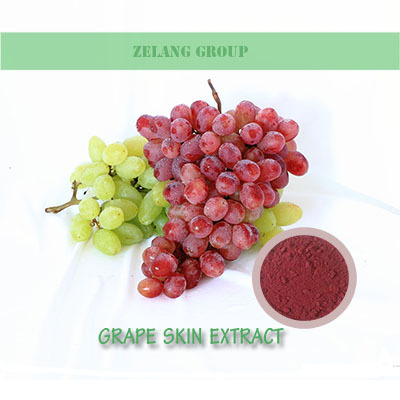 Red Grape Skin Extract / Resveratrol/grape skin pigment