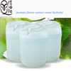 Oil-control facial moisturizing jasmine flower extract water hydrolat Molly face essence OEM