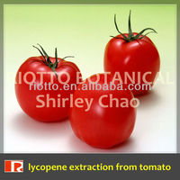 Riotto factory supply Nature lycopene extraction from tomato 5%-90%
