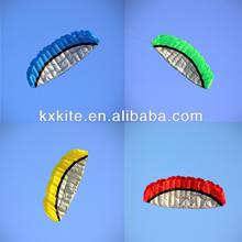 2.5M Dual line parafoil kite from kite manufacturers