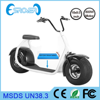 Most Famous big tire electric motorcycle 800W motor kids electric motorcycle