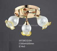 High Quality Simple modern round Ceiling LightWrought iron absorb dome light,