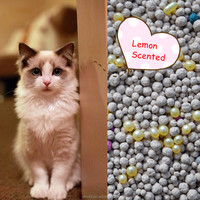 Huddled Lemon Scented Bentonite Clay Cat Litter/Pet Toilet produce by own Factory with Superior Quality and Fast Delivery