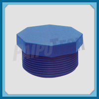 Plastic Flexible Pipe Fitting UPVC/PVC-U/PVC Threaded Plug
