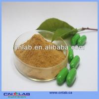 high quality dendrobium extract 40% HPLC