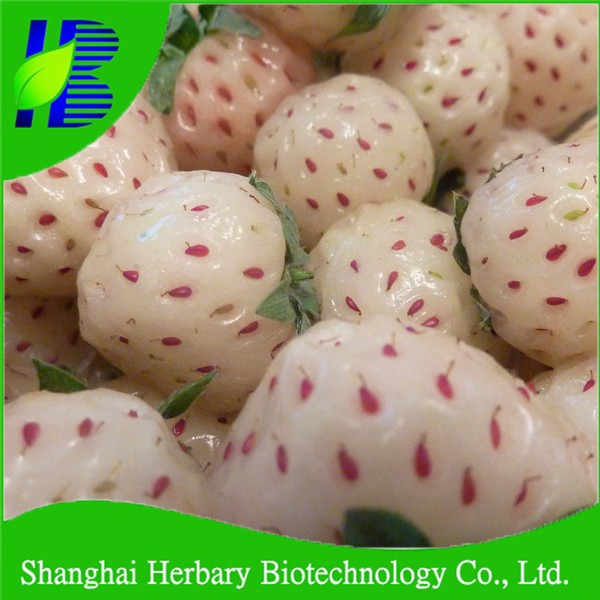 High sprouting rate White Strawberry Seeds