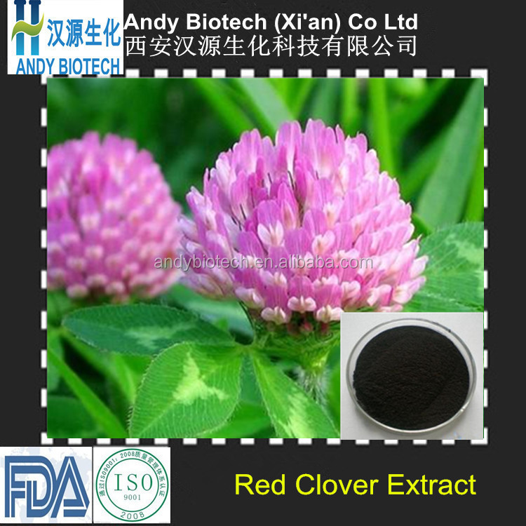 High Standard 40% HPLC 100% Natural Isoflavones Red Clover Extract