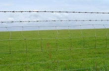 hot dipped galvanized grassland fence for security