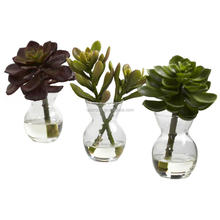 free samples Wholesale Artificial Succulent Plant,mini flowering rubber tropical plants artificial succulent