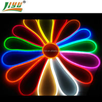HIGH LUMEN color changing RGB rope light with IC controller