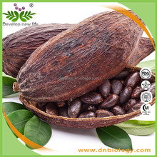 China manufacturer free sample supply organic 100% pure high quality cocoa seeds extract theobromine powder