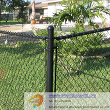 Professional pvc coated or Galvanized Chain Link Fence for sale/PVC coated galvanized chain link fence for baseball field