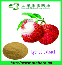 Hot selling top quality free samples lychee seed P.E. / Lychee extract