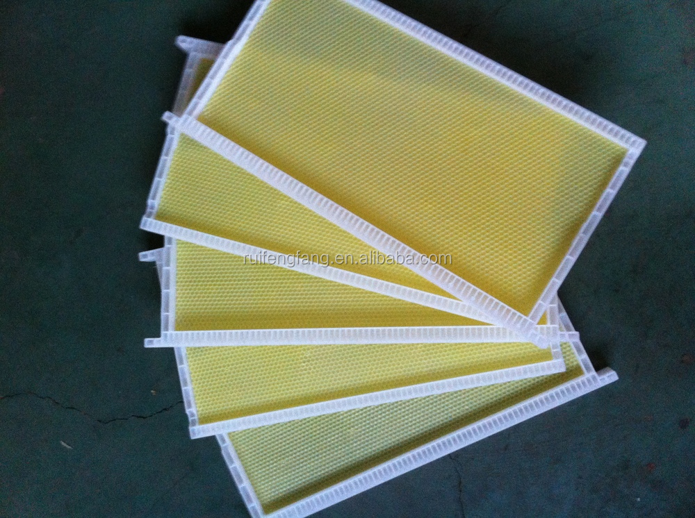 Good plastic bee frames with plastic foundation