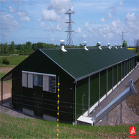 Steel Structures commercial steel structure chicken houses