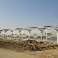 Multi Fountional Plastic Greenhouse For Agriculture