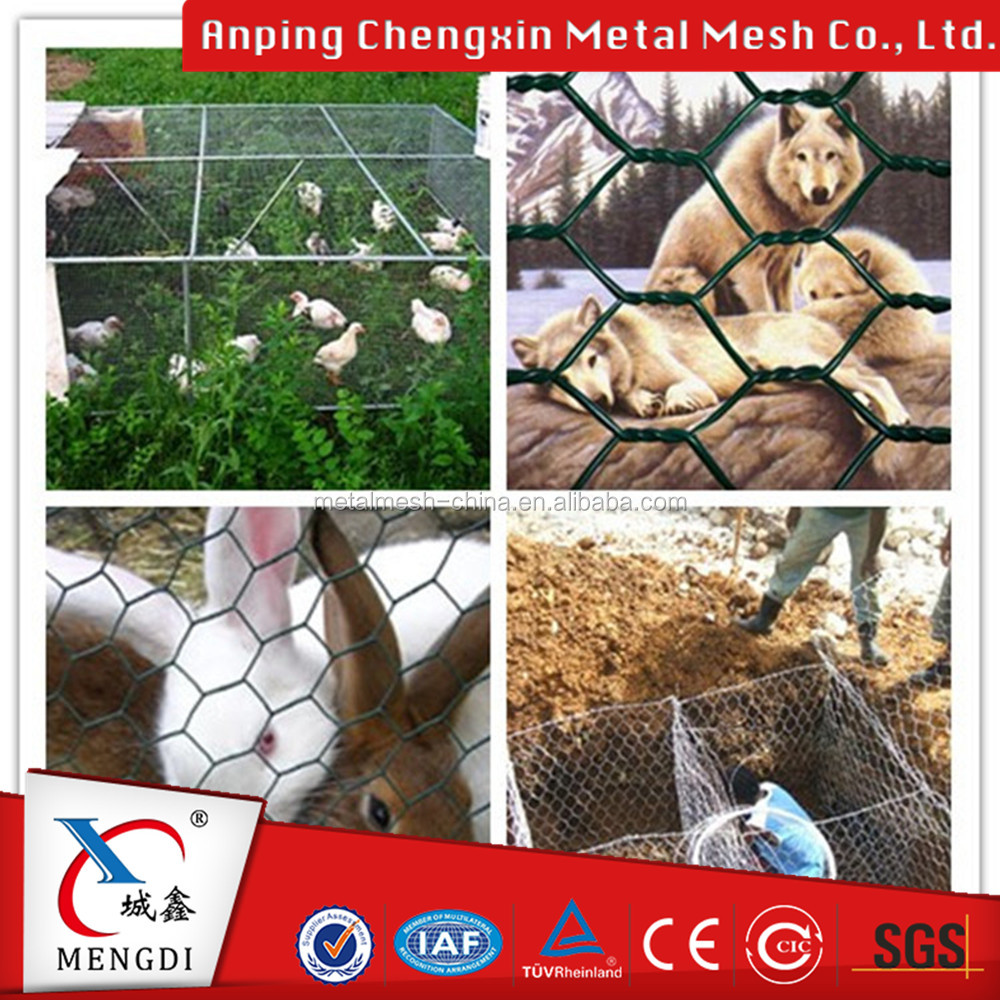Chicken Coop Wire Netting/Chicken Wire Hexagonal Mesh/Chicken Coop Galvanized Wire Mesh