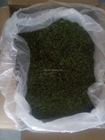 Dried mint leaves with fresh mint aromas